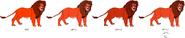 Tomato Lion's color evolution
