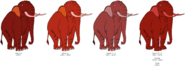Bacon Elephant's color evolution