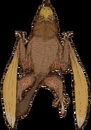 Brown pterogecko (SciiFii)