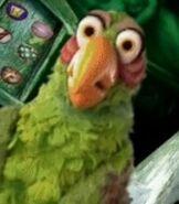 Stevenson-the-parrot-muppet-treasure-island-1.91