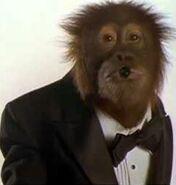 Dunston Orangutan