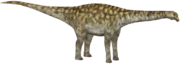 Borealosaurus (SciiFii).png