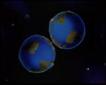 Chia Earth