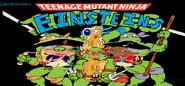 Teenage Mutant Ninja Einsteins.