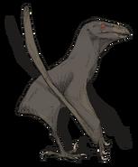 Aquilapterus (SciiFii)