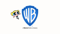 Warner Bros. Pictures logo (The CN Movie variant).png