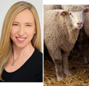 Alice Dinnean and Sheep