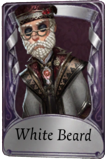 Costume Servais Le Roy White Beard.png