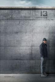 Kosogłos plakat Haymitch.jpg