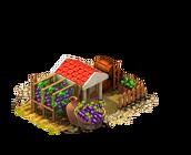 Winegrower r