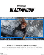 Black-Widow-IMAX-2-Resized