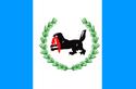 Flag of Irkutsk Oblast svg