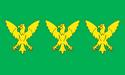 The Flag of Caernarfonshire