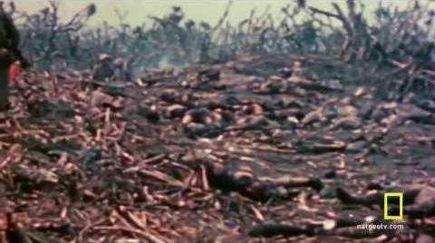 World War II Documentary
