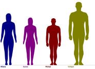 Height gang