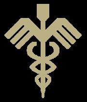 Logo-licht.png