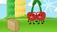 S2e2 cherries stare at box anxiously