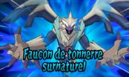 Faucon GO