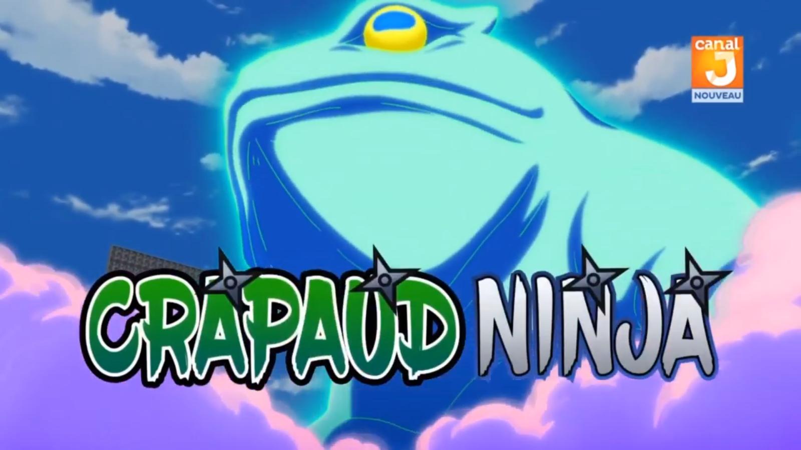 Crapaud Ninja