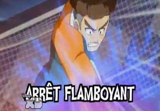 Arrêt Flamboyant
