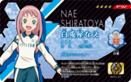 Nae Eleven Licence