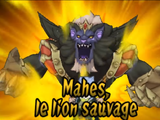 Mahes, Le Lion Sauvage