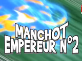 Manchot Empereur N°2