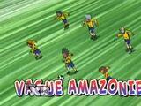 Vague Amazonienne
