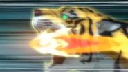 Remate del Tigre HD (10)
