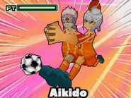 Aikido ds