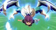 Falco wing 3