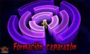 Formación caparazón 3DS 6