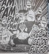 Rechace fuego manga
