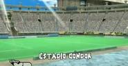 Estadio condor