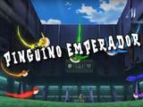 Pingüino Emperador 7