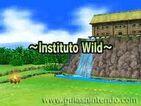 Instituto Wild Juego
