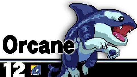 12- Orcane – Indie Pogo