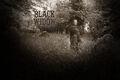 BlackWidow02.jpg