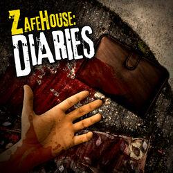 Zafehouse-diaries.jpg