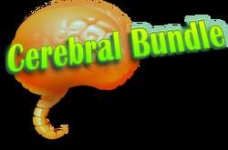 Cerebral-bundle.png