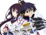 Infinite Stratos (series)/Anime