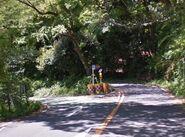 Tsubaki Line's Branching Paths