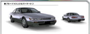 S13 Bluish Silver Two Tone AS0