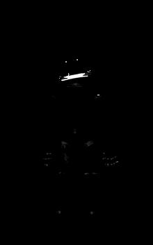 Shadow Springbonnie.png