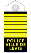 Policelevis-dir2010