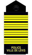 Policelevis-inschef