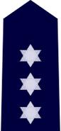 NSWPol-inspector