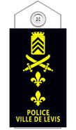 Policelevis-diradjoint