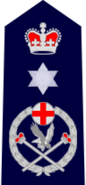 NSWPol-commissioner