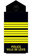 Policelevis-ins